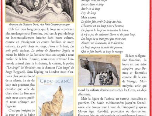 Le Loup – La chronique du professeur Hernandez