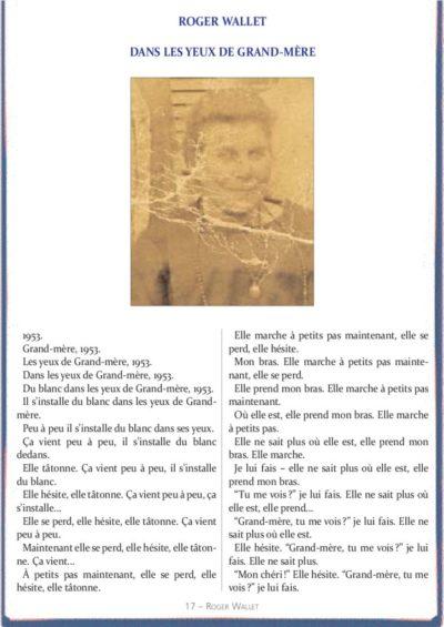 thumbnail of a_le_calepin_bleu_nø14_roger_wallet